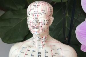 Traditionelle Chinesische Medizin (TCM) – Grundkurs