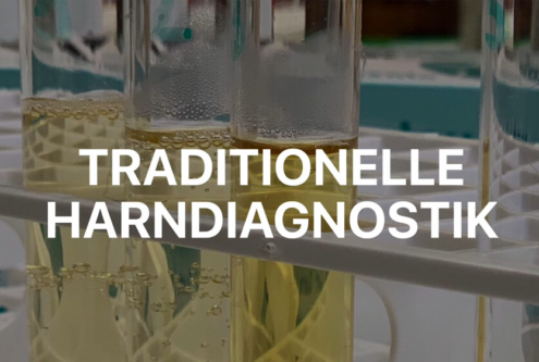Traditionelle Harndiagnostik