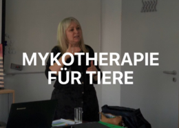 Mykotherapie in der Veterinärmedizin Seminar