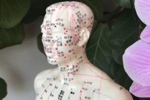 Traditionelle Chinesische Medizin (TCM) – Aufbaukurs