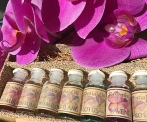 Ätherische Öle in der Aromatherapie - Einführungskurs
