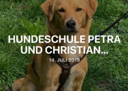 Praktikum Hundeschule 2019